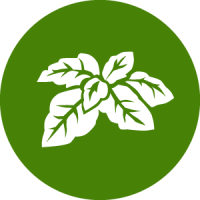 herb_icon
